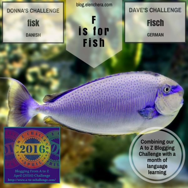 A to Z Blogging Challenge: F is for Fish #atozchallenge