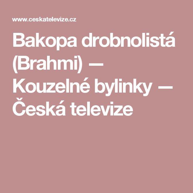 Bakopa drobnolistá (Brahmi) — Kouzelné bylinky — Česká televize