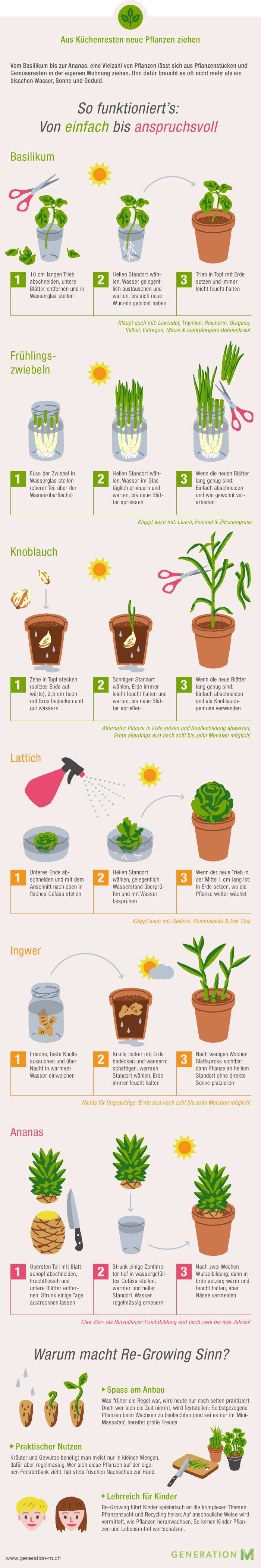 Pflanzen selber ziehen wird heute nur noch selten praktiziert.