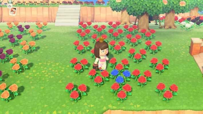 方 どうぶつ 増やし 森 の 花