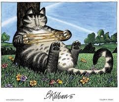 Love this Kliban Cat