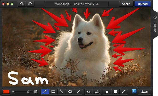 Monosnap - Free Screenshot Tool for Mac. Monosnap for Mac Take screenshots. Draw on it. Add Quotes. Scale image. Add to the image and other tools. Shoot video and share your files. It's easy to use an it's Free!