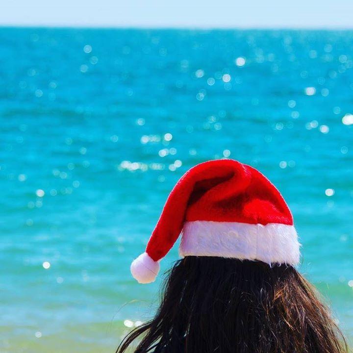Comparateur de voyages http://www.hotels-live.com : Merry kiwi Christmas everyone. by capturenz https://www.instagram.com/p/_tKLJ3GdBQ/ #Flickr via https://instagram.com/hotelspaschers via Hotels-live.com https://www.facebook.com/125048940862168/photos/a.1069203666446686.1073741901.125048940862168/1073719692661750/?type=3 #Tumblr #Hotels-live.com