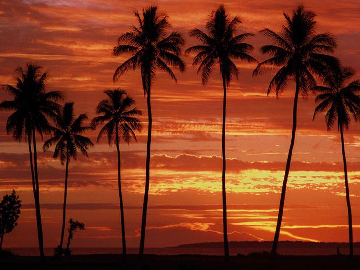 Sunset 'Ratua Private Island Vanuatu' style  www.islandescapes.com.au