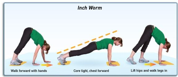 Image result for inchworm stretch