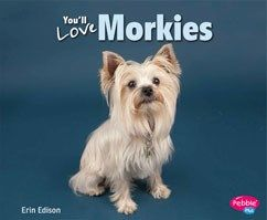 You'll Love Morkies