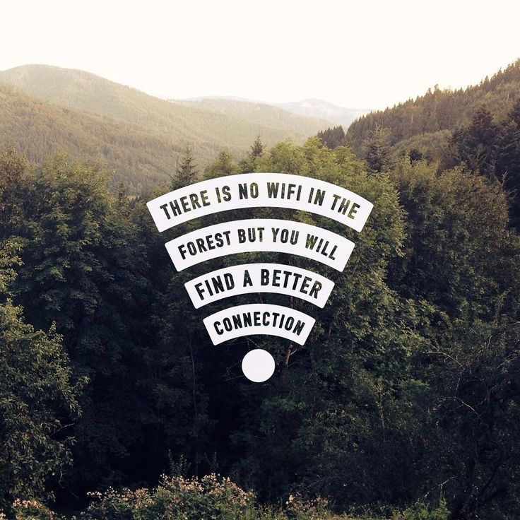 There is no wifi in the forest but you will find a better connection // @tentree