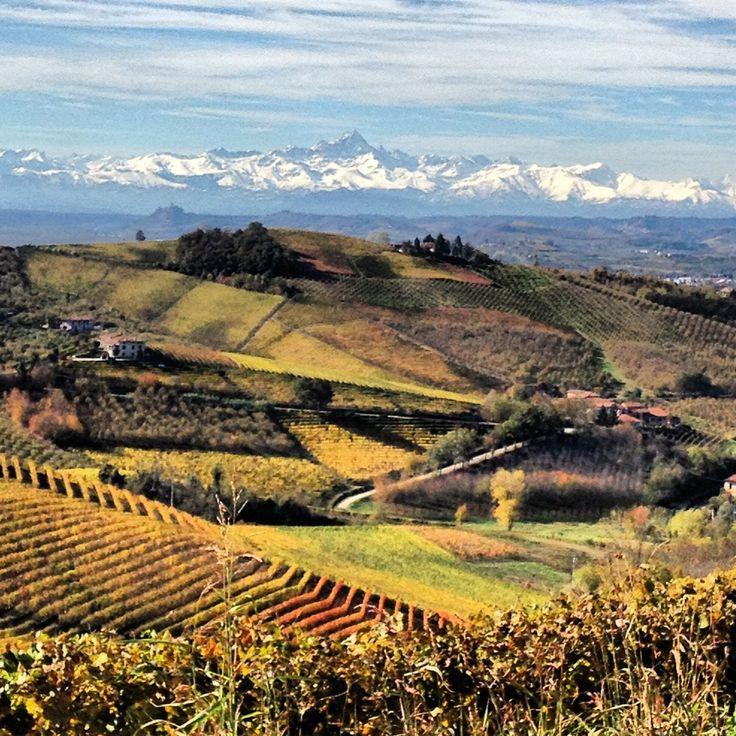The snow capped mountains of Torino looking north from Barolo, Piedmont, Italy.
