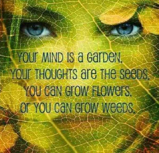 wicca witchcraft quotes blessed be garden pinterest