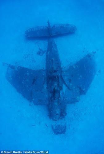 WWII Plane graveyard discovered in the Pacific by Brandi ...