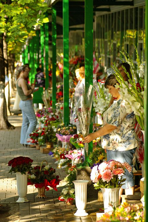 I bought flowers for Svetlana and Misha's anniversary on this street! Flower Market Row, Chisinau, Moldova by danbachmann