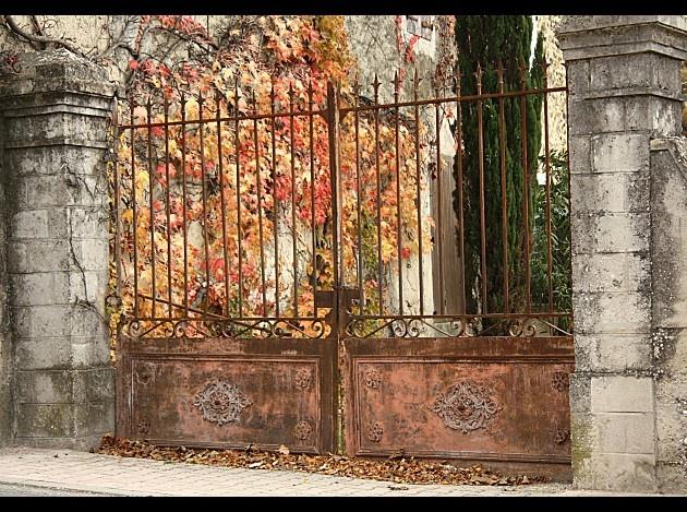 Les 147 meilleures images du tableau portail fer forg sur pinterest porte entr e portes d for Les portes de fer forge