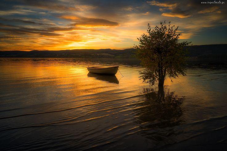 Rzeka, Drzewo, Zachód Słońca, Łódka