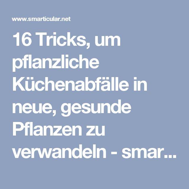 16 Tricks, um pflanzliche Küchenabfälle in neue, gesunde Pflanzen zu verwandeln - smarticular.net
