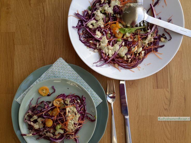 kleurrijke knapperige rode koolsalade