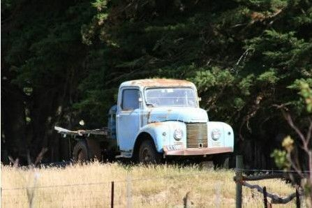 """Old Superpoise put out to grass   Smallest of the Commer/Karrier range of """"Superpoise"""" MkII models this 1-tonner flatdeck is seen in a typical rural New Zealand situation. Retired and put out to grass in a paddock! The climate here is kinder to such vehicles that are left to slowly decay. January 2009. Wairarapa region East of Masterton."""