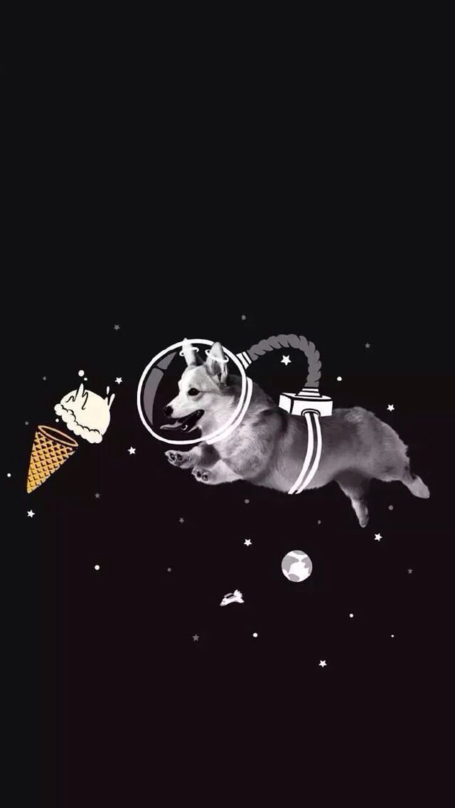Corgi Wallpaper Dog Wallpaper Corgi Wallpaper Wallpaper Backgrounds