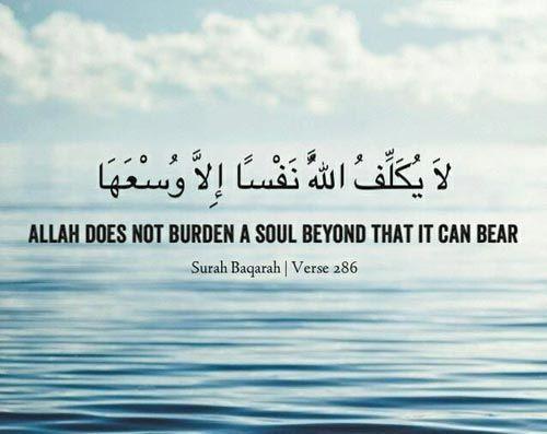 81+ Beautiful & Inspirational Islamic Quran Quotes / Verses in English