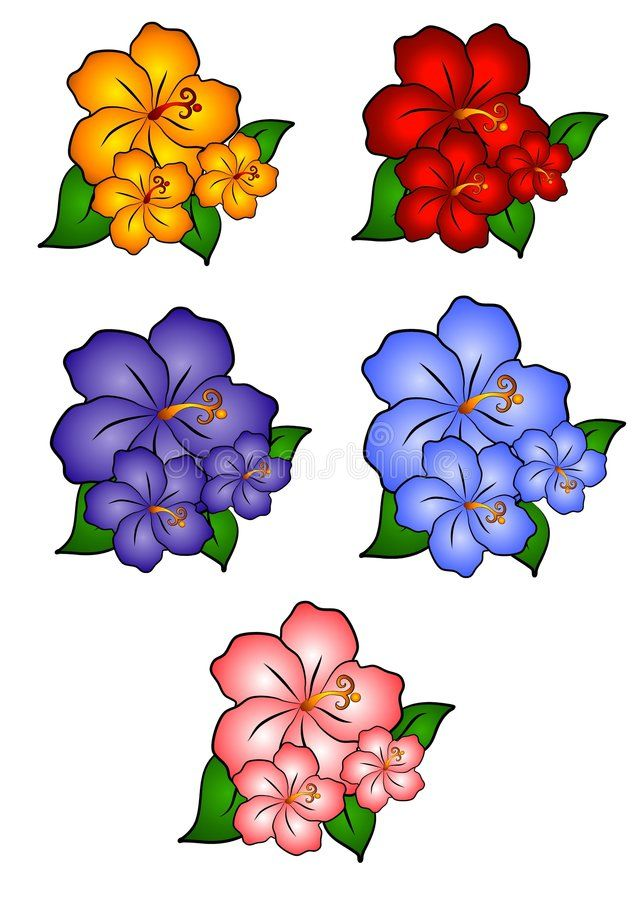 5 Hawaiian Hibiscus Flowers A Clip Art Illustration Of 5 Individually Colored H Ad Illustration Art Clip Art Borders Flower Border Png Flower Clipart