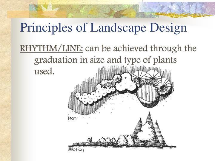 Principles Of Landscape Design Landscape Design Landscape Flower Bed Designs