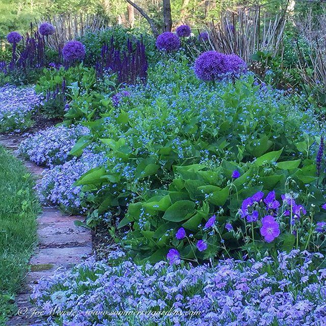 Landscape design, garden design, swimming pool… – summersetgardens – Flowers – God is the Master Artist!