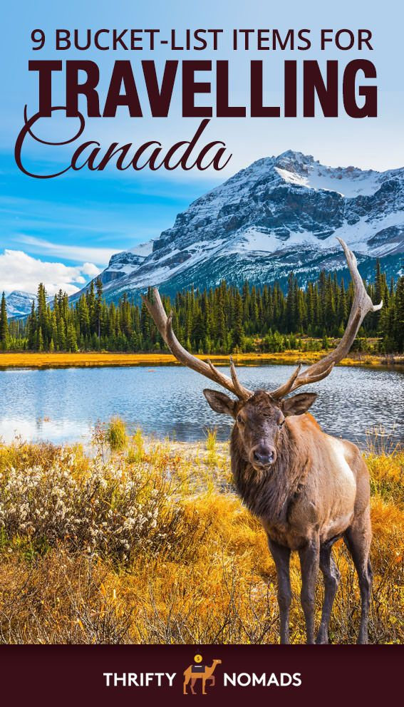 9 Bucket List Items For Travelling Canada Canada Travel Travel Humor Canada Funny