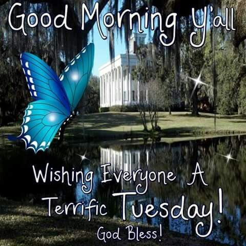 Good Morning Yall Wishing You A Terrific Tuesday good morning tuesday tuesday quotes good morning quotes happy tuesday tuesday quote tuesday blessings happy tuesday quotes good morning tuesday