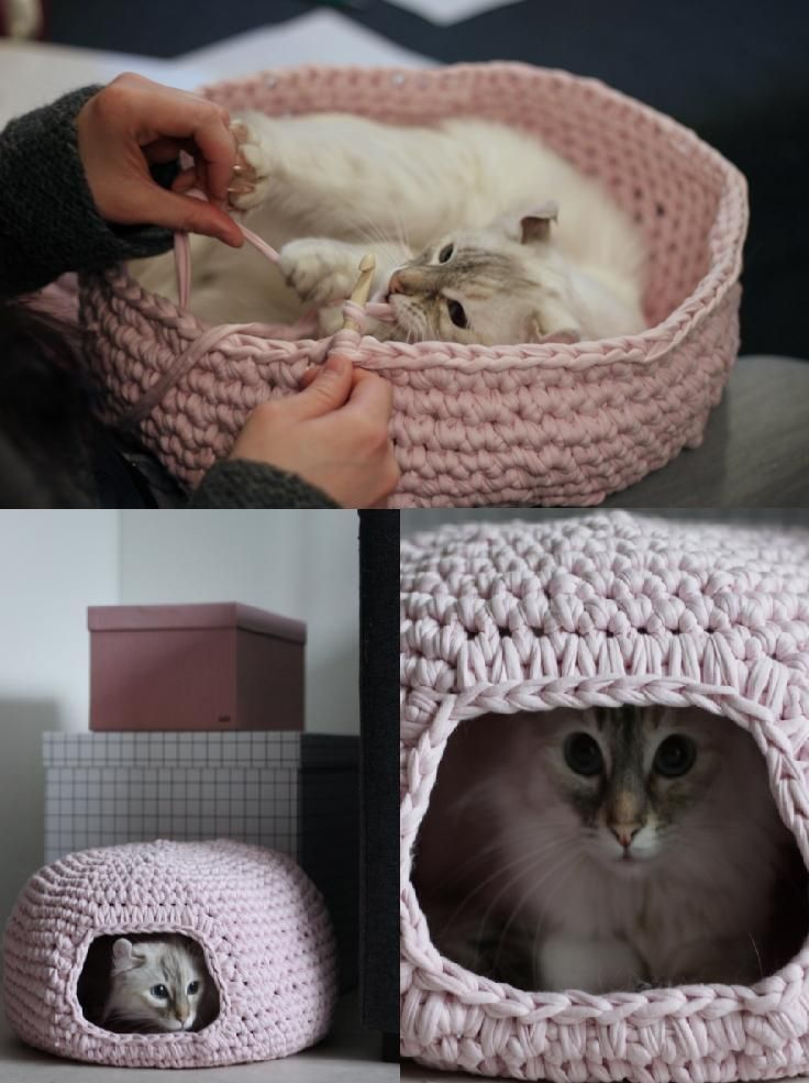 "Crocheted Cat Bed  My boyfriend moved in a year ago and his cat about six months later. To help both of our ""kids"" have similar things together, he purchased the item in the bottom right corner for them! This is much prettier! She is currently, as I type and peek, sleeping in  a commercial version of the top basket. Projects for kitties ahead!"