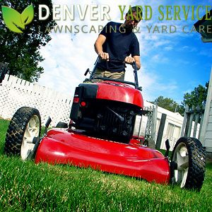 Denver Yard Service will provide quality lawn mowing service for Denver residents for a low price with auto pay. Just give us a call one time to set up your weekly service.
