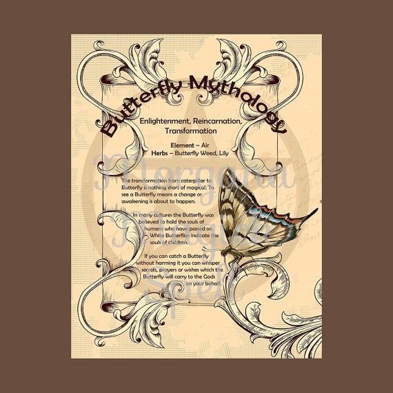 BUTTERFLY MYTHOLOGY, Digital Download,  Book of Shadows  Grimoire, Scrapbook, Spells, Wiccan, Witchcraft,