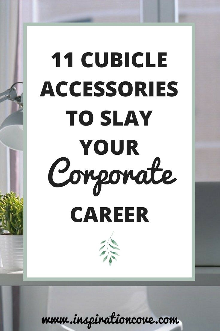 Blogs As Career Accessories For >> 11 Cubicle Accessories And Decorations To Slay Your Corporate Career
