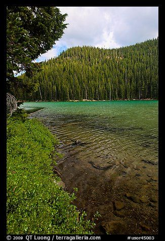 Clear emerald waters, Devils Lake. Oregon, USA