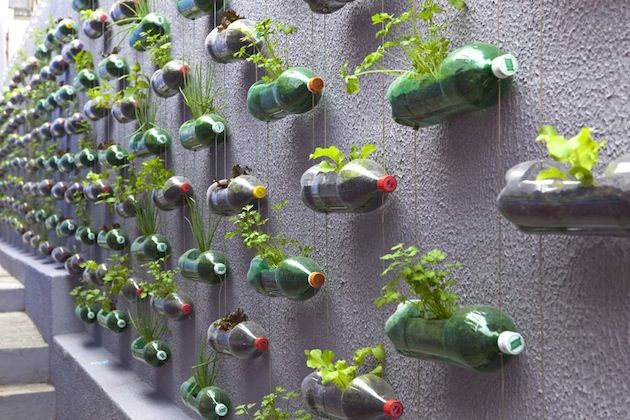 DIY: Creation of a modern garden with upcycling plastic bottles | Architecture, Art, Desings - Daily source for inspiration and fresh ideas on Architecture, Art and Design