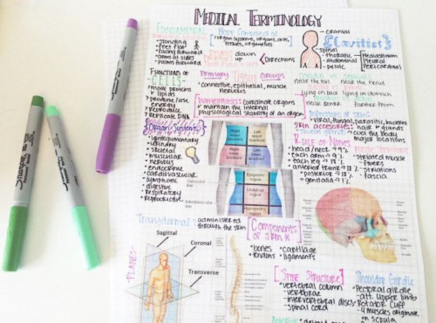 These pretty notes are just what the doctor ordered. | 25 Studying Photos That Will Make You Want To Do Well In School For Once