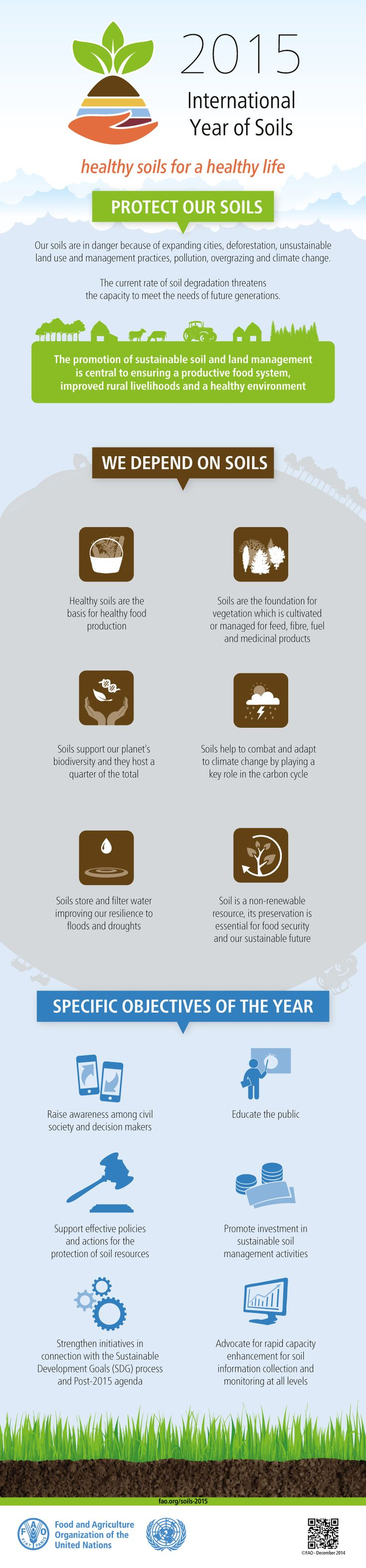 Infographic international year of soils 2015 healthy for Soil our life