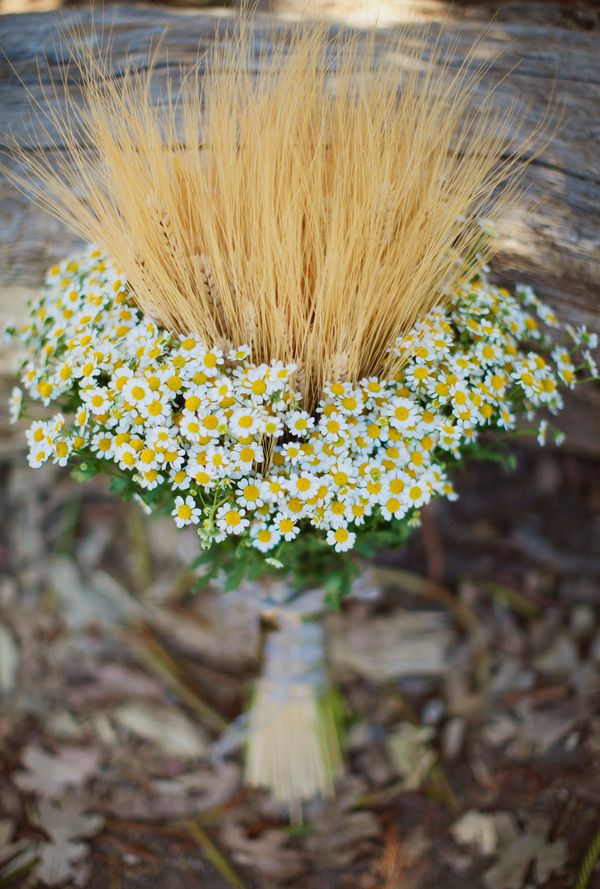 Wheat and daisies...such a perfect combination for a #wedding bouquet! From http://ruffledblog.com/orcutt-ranch-wedding/  Photo Credit: http://lauragoldenberger.com/