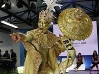imagenes-carnavales-barranquilla-fiestas-8