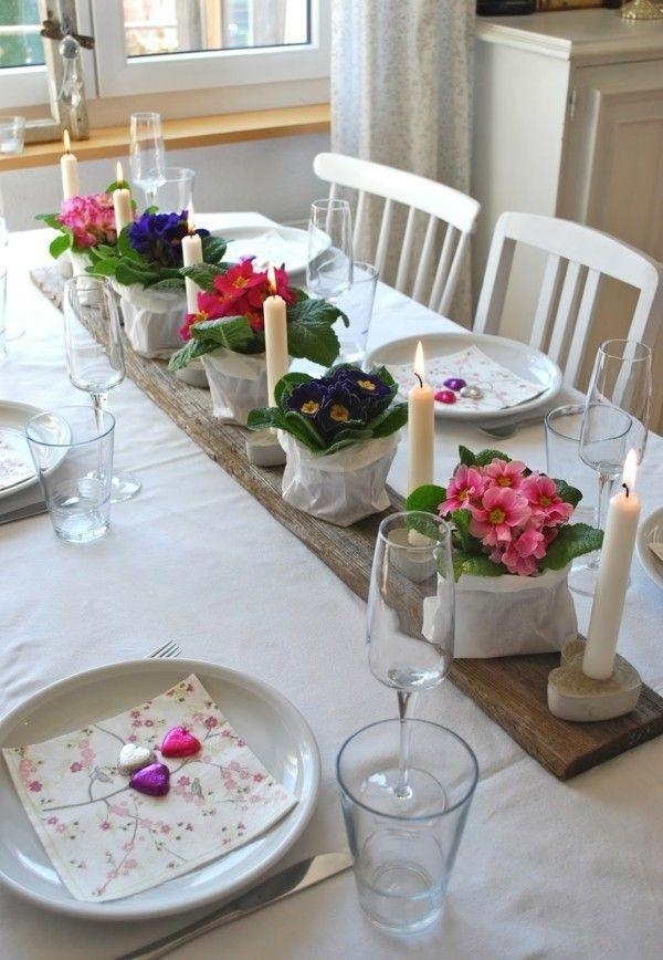 Die besten 25+ Primeln Ideen auf Pinterest  Blumengarten, Blauer Blumen Name und blaue Pflanzen