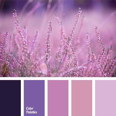 All shades of lilac-purple in this color palette evoke the memories of wild flower meadows with their intoxicating aroma and heady beauty. The palette is p.