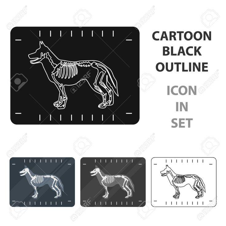 Dog xray icon in cartoon style isolated on white