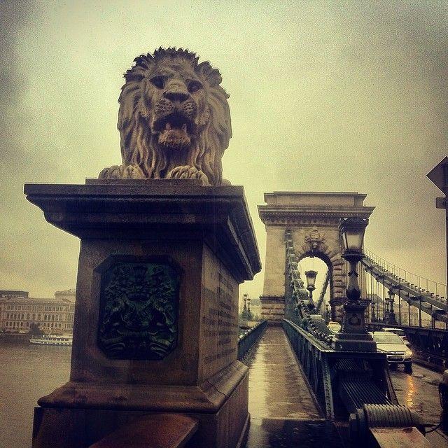 Lánchíd | Chain Bridge in Budapest