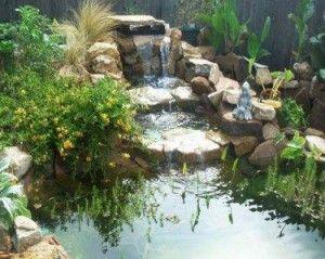 backyard ponds | Backyard Pond Designs | Backyard Ponds