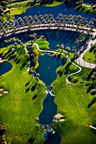 A palm tree lined golf course drive leads to Marriott's Desert Springs Resort.