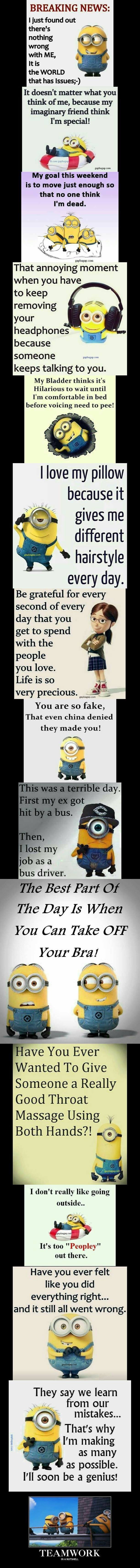Top 15 Funniest Memes By The Minions