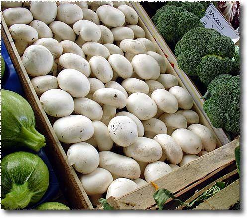Frutta e Verdura: Funghi Coltivati