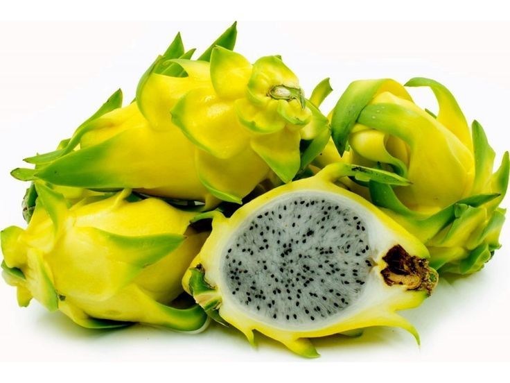 9,95 €Dragon Fruit Yellow Rare Exotic 100 Seeds Health Fragrant Price for Package of 100 seeds. DRAGON FRUIT. Truly one of God's wonders! Pitaya Fruit, Pitahaya Fruit or commonly known as the Dragon fruit is among the most nutritious and wonderful exotic fruits. It is a favorite to many, particularly people of Asian origin. It features a mouth watering light sweet taste