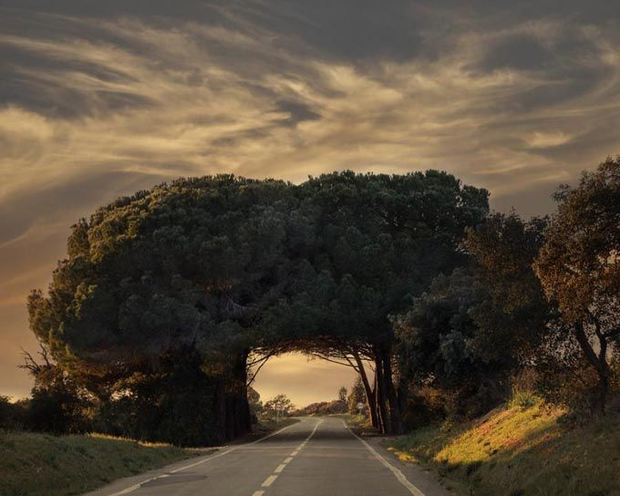 where nature meets... a road! - Alentejo, Portugal