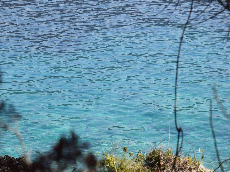 For sale two (2) neighboring seaside plots with view to the green waters of the Ionian Sea are available for sale, by the real estate agency 'Elinon Gi'.