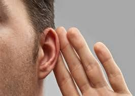 How much do you know about your ears? Here Are Some Tips And Tricks About Hearing Abilities Is Composed Of Only A Little Array Of Frequencies
