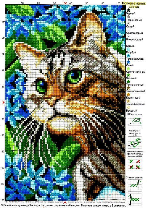 * . #Cat Lovers Join > http://OzziCat.com.au